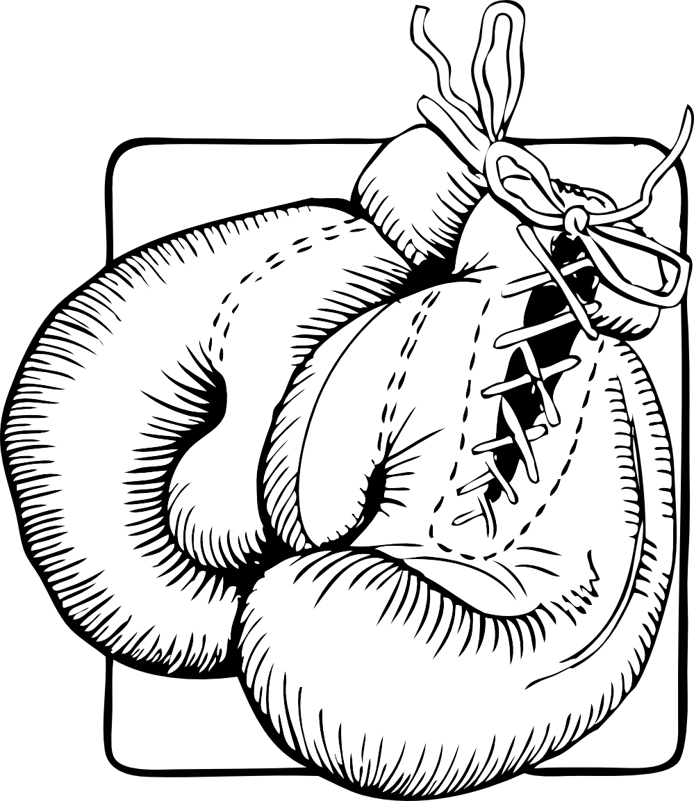 Gloves clipart svg. Awesome coloring page boxing