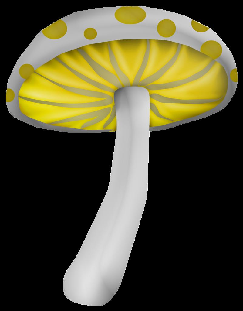 Gnome clipart psychedelic mushroom. Gj kitmagicalland png album