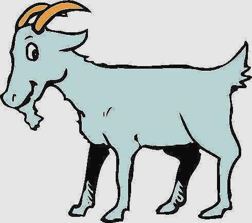 Exotic billy best digital. Goat clipart