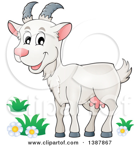 clipartlook. Goat clipart baby goat