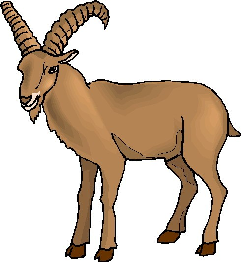 with. Goat clipart brown goat