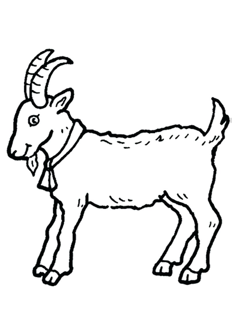 Goat clipart coloring page. Pages boer printable baby