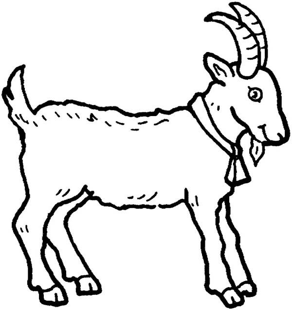 Goat clipart colour. Picture of a in