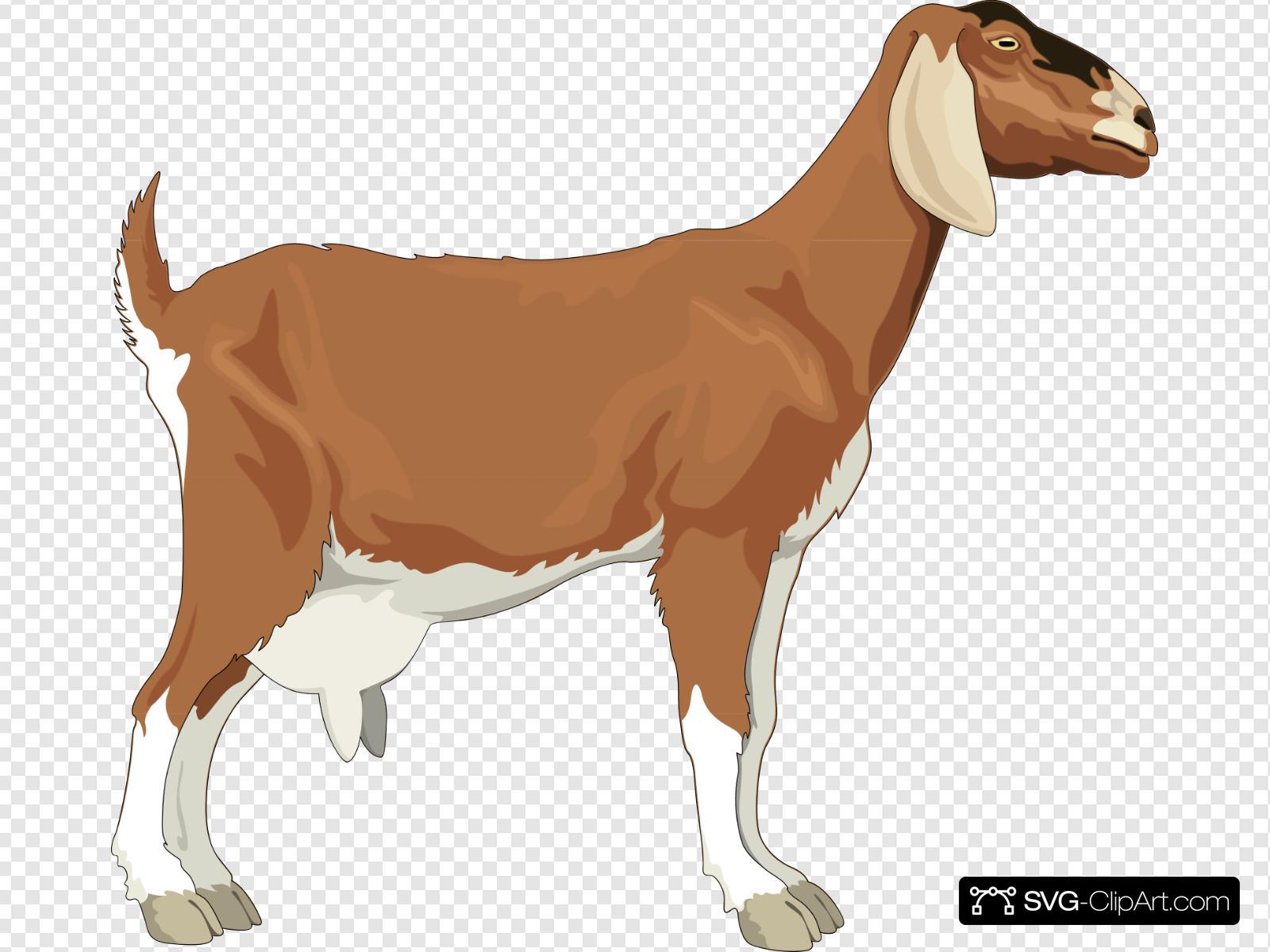 Clip art icon and. Goat clipart colour
