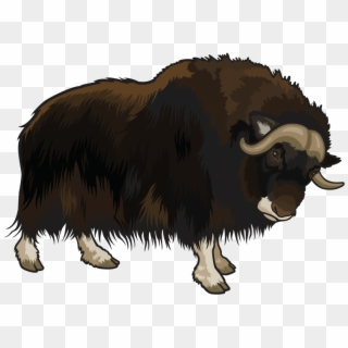 Yak clipart female buffalo. Indian png images free