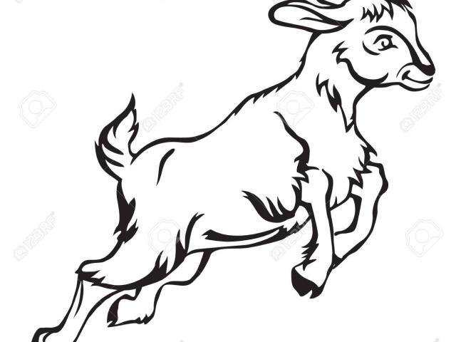 Goat clipart jumping. X free clip art