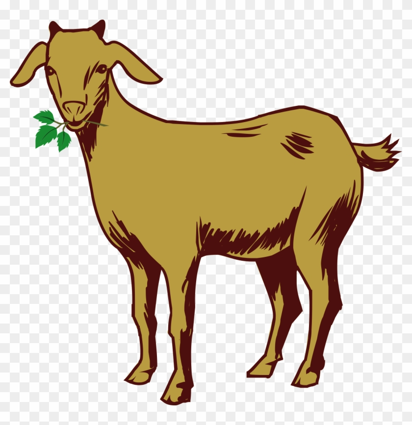 Png images drawing with. Goat clipart male goat