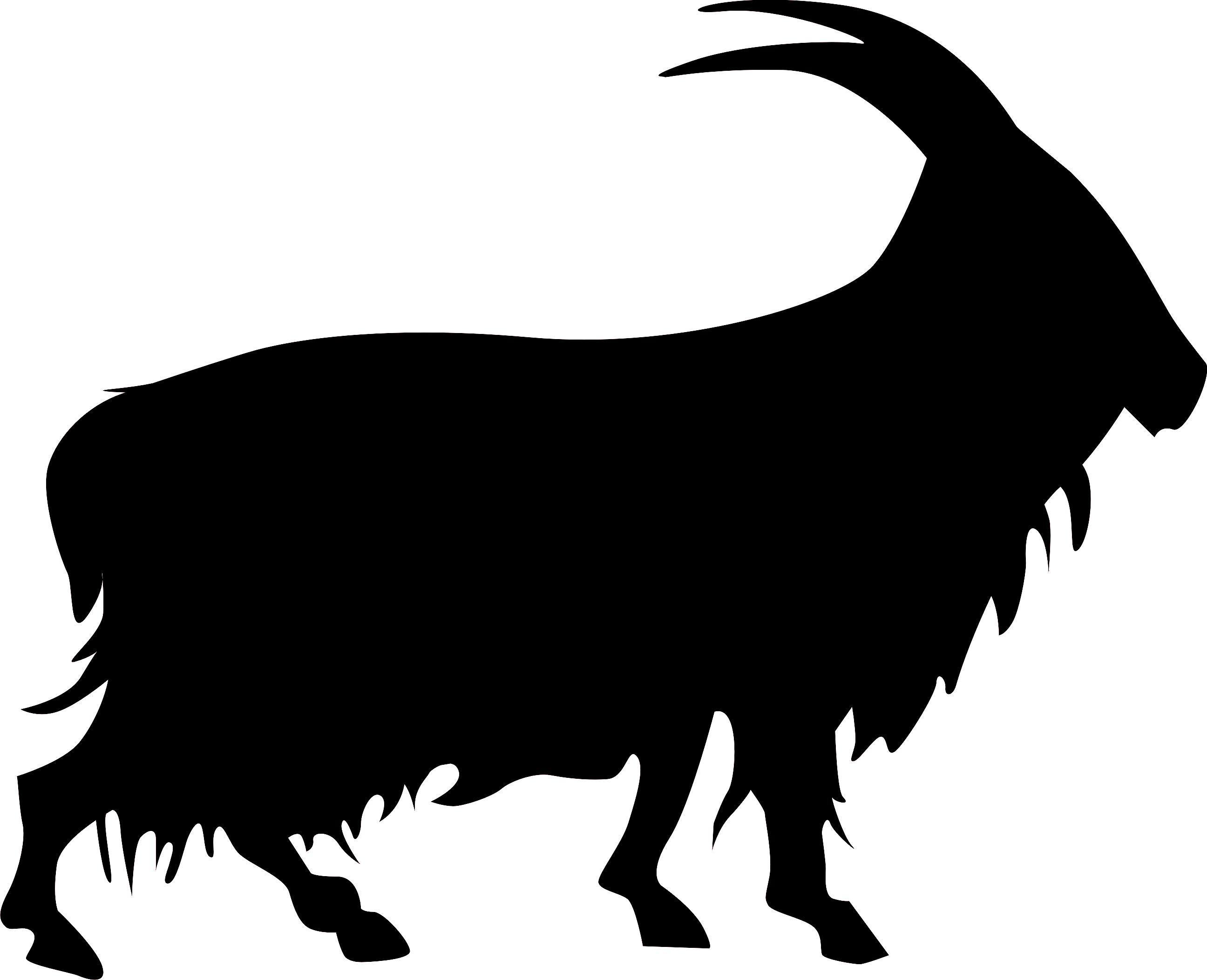 Goat clipart ram. The cashmir brand pinterest