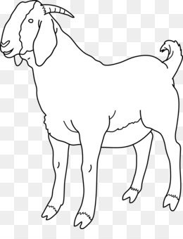 Cartoon png and transparent. Goat clipart she goat