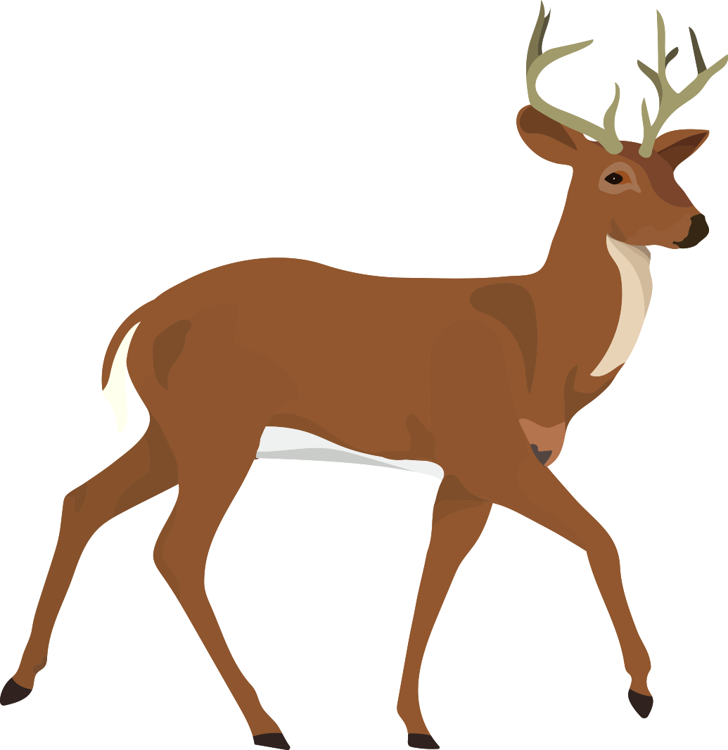 Buncee biology honors b. Gold clipart reindeer
