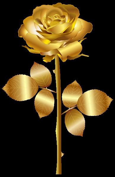 Gold flower png. Rose clip art image