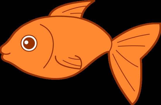 Panda free images clipartgoldfish. Goldfish clipart