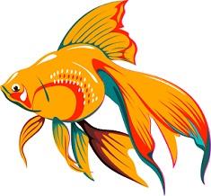 Jpg. Goldfish clipart