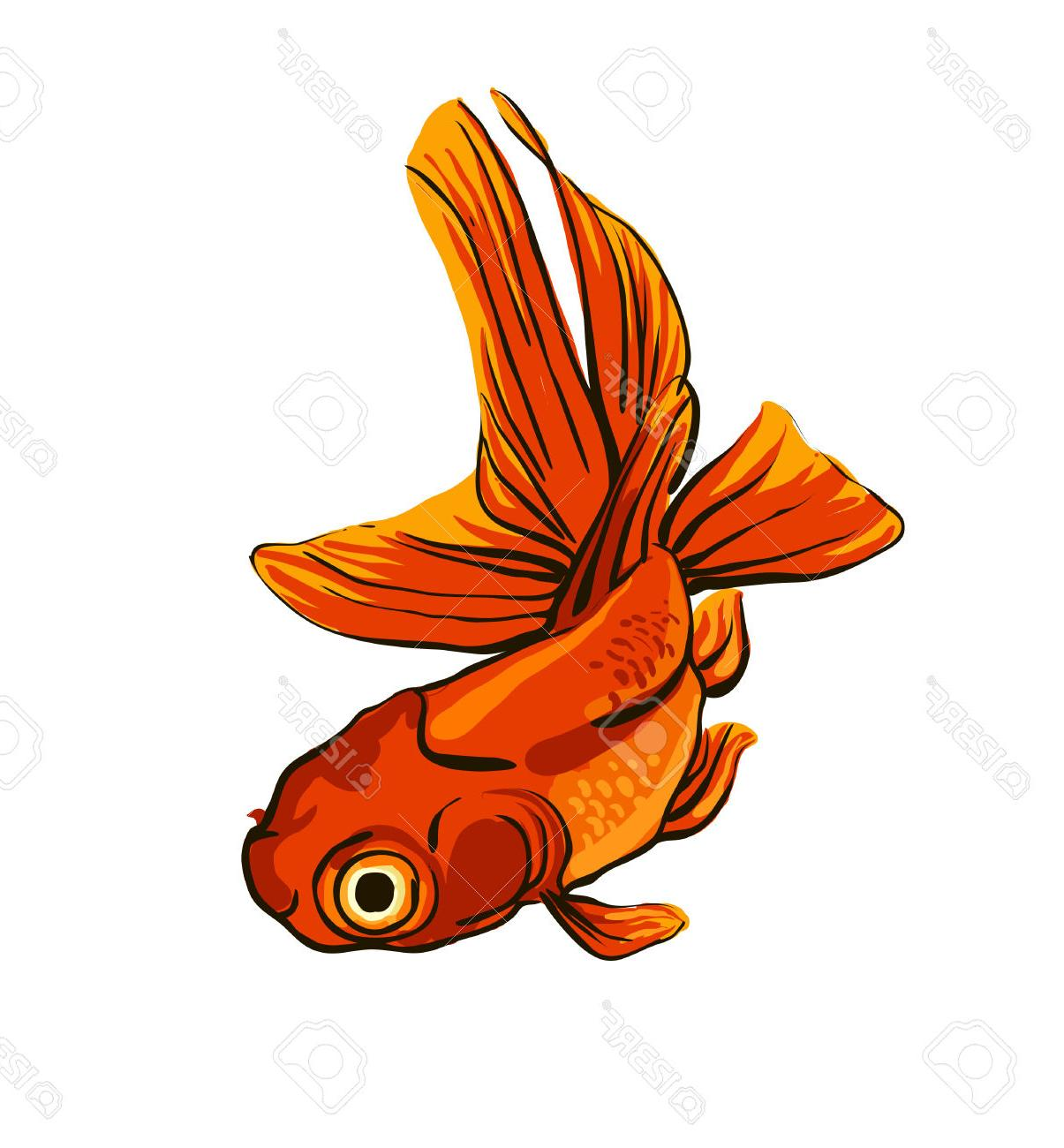 Goldfish clipart. Best red fish file