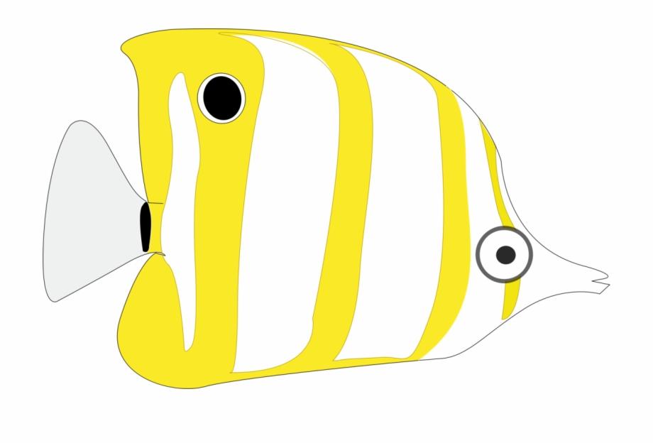 Tropical cartoon ornamental png. Goldfish clipart 2 fish