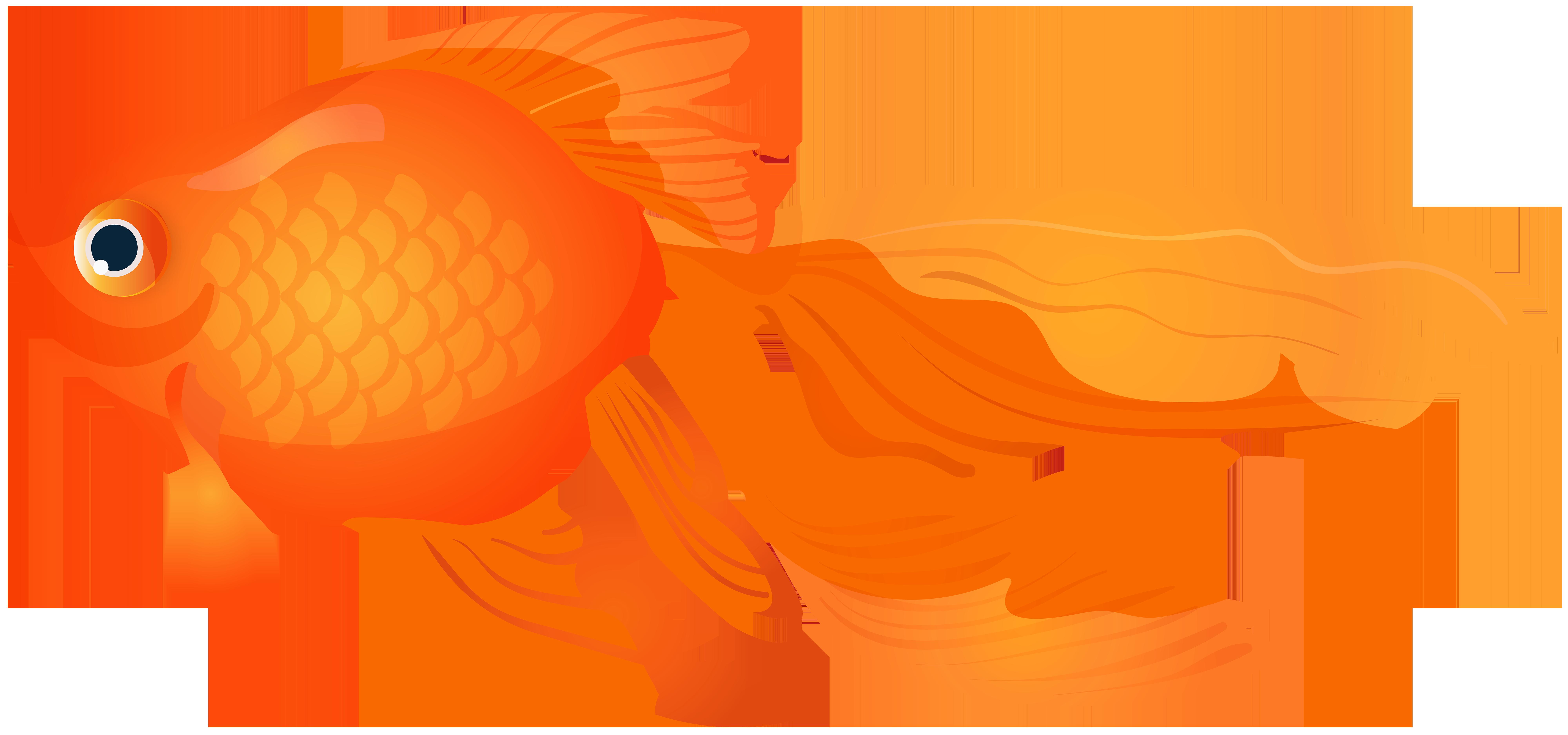 Goldfish clipart. Transparent png clip art