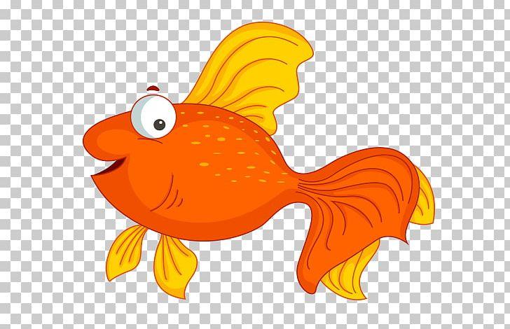 Cartoon png animaatio animal. Goldfish clipart animated