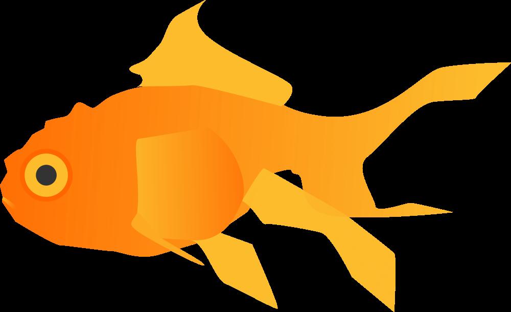 Goldfish clipart basic fish. Onlinelabels clip art