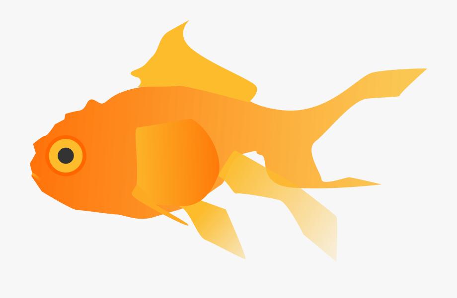 Goldfish clipart basic fish. Free