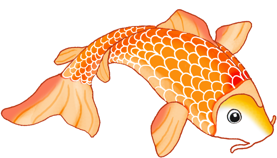 Goldfish clipart colorful fish. Hd koi free unlimited