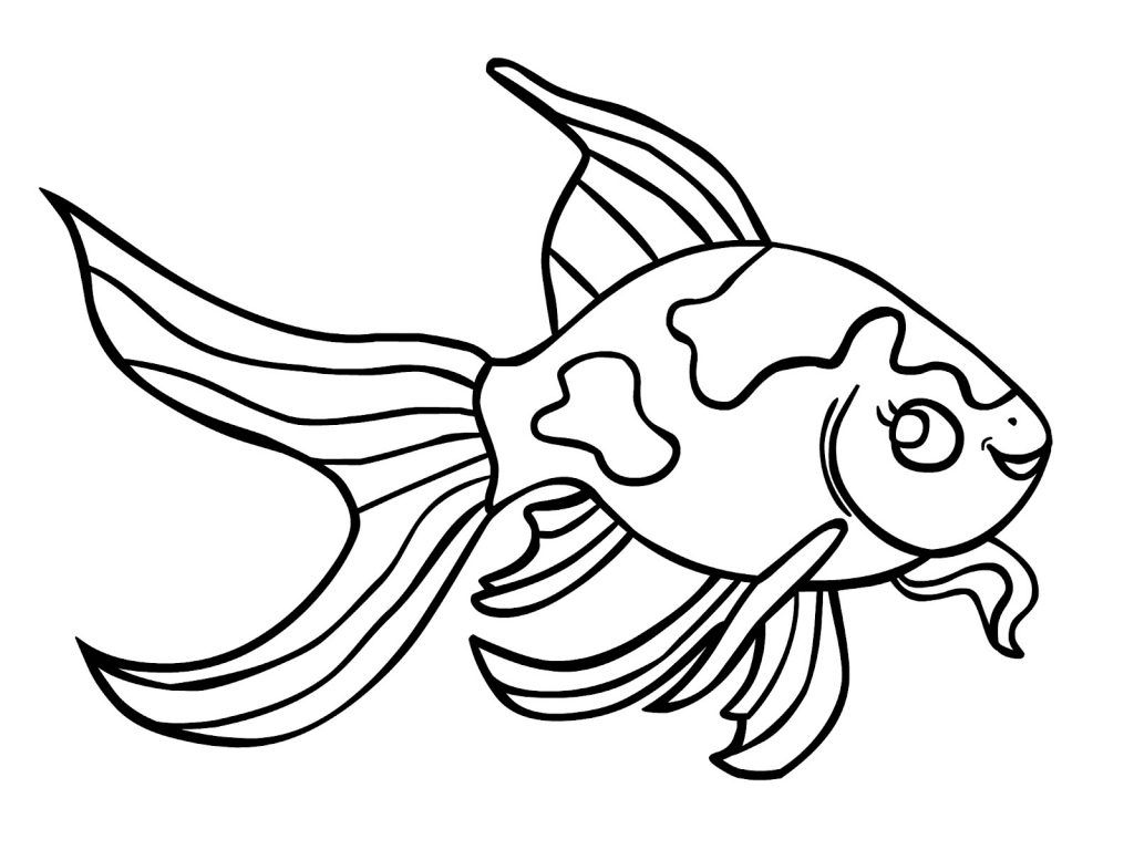Free printable pages for. Goldfish clipart coloring page