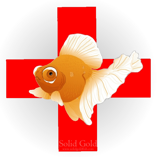 First aid kit solid. Goldfish clipart dead goldfish