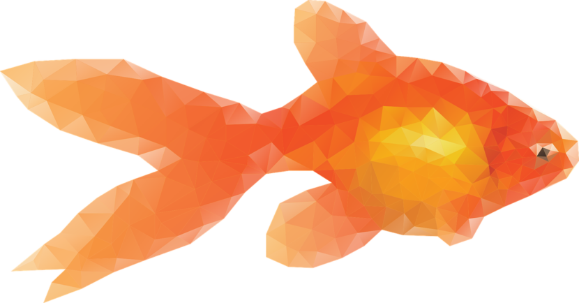 Blogging engaging your target. Goldfish clipart dead goldfish