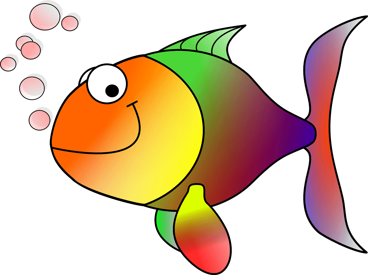 A guide to care. Goldfish clipart fancy goldfish