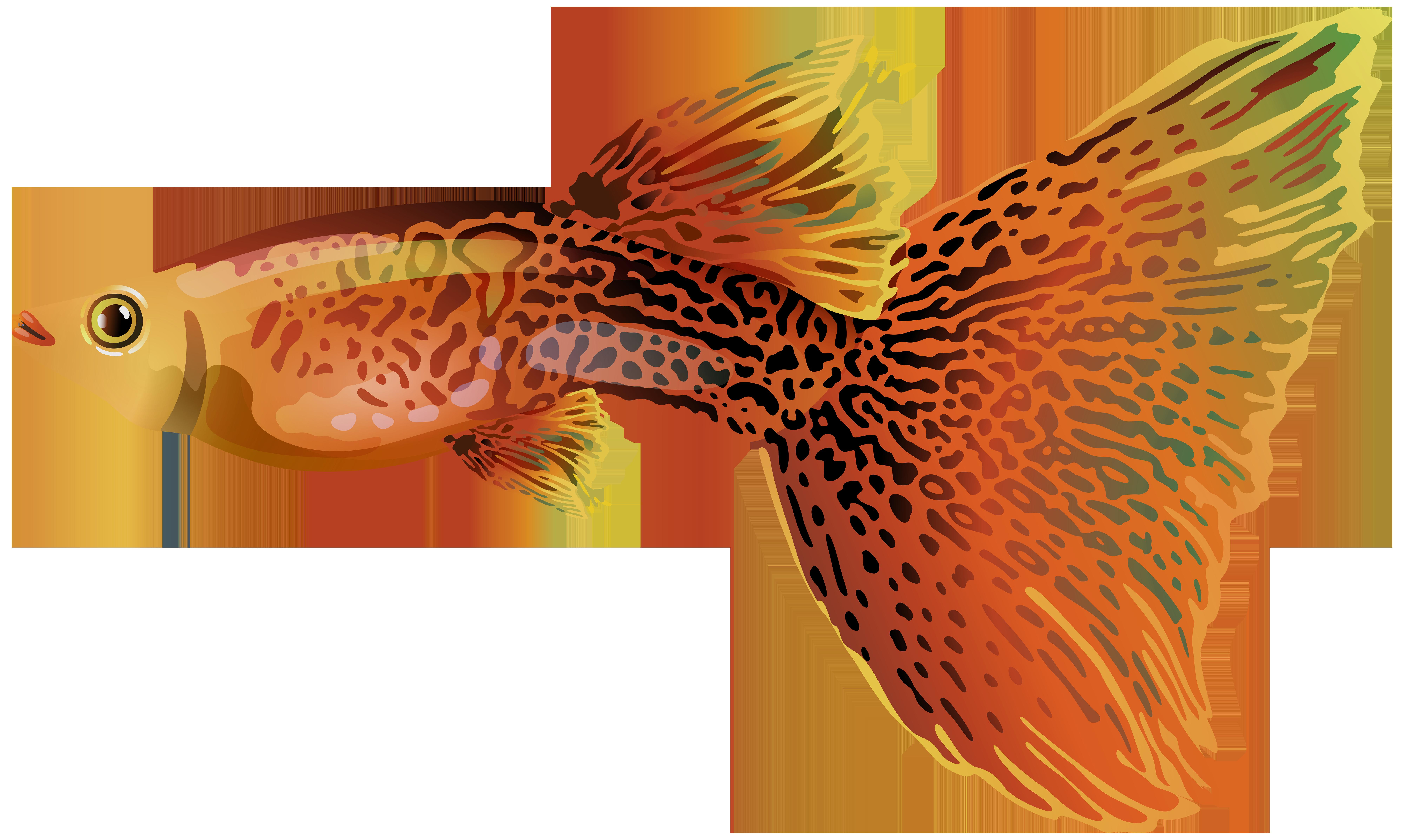 Goldfish clipart fancy goldfish. Guppy png free clip