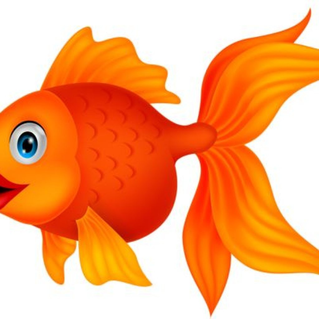 Clip art at getdrawings. Goldfish clipart fancy goldfish