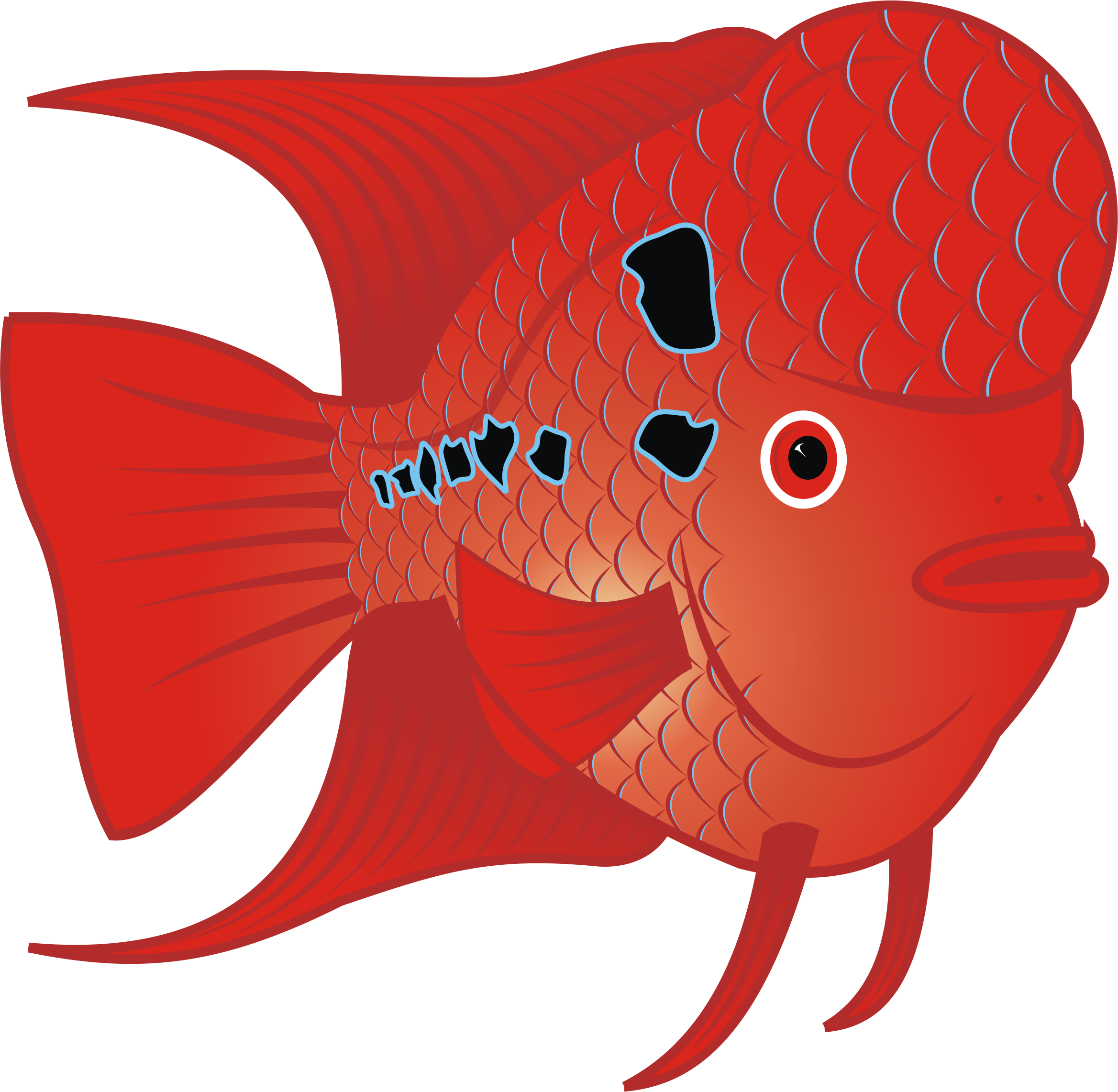 Red big image png. Goldfish clipart fish head