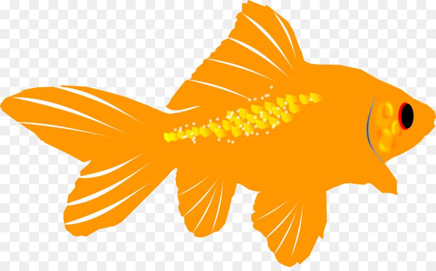 Cartoon transparent clip art. Goldfish clipart gold fish