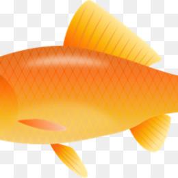 Goldfish clipart gold fish. Free download clip art