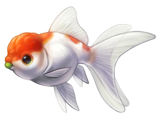 Free cliparts download clip. Goldfish clipart heart