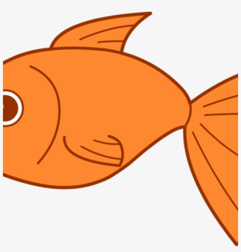 Clip art panda free. Goldfish clipart ish