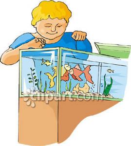 Goldfish clipart kid. Boy feeding royalty free