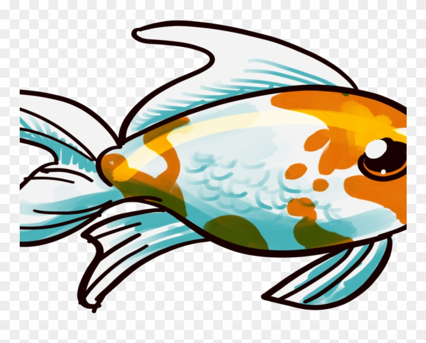 Goldfish clipart part. Comet care and info