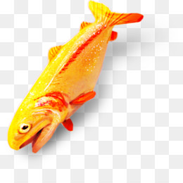 Goldfish clipart pickled. Free download fish png