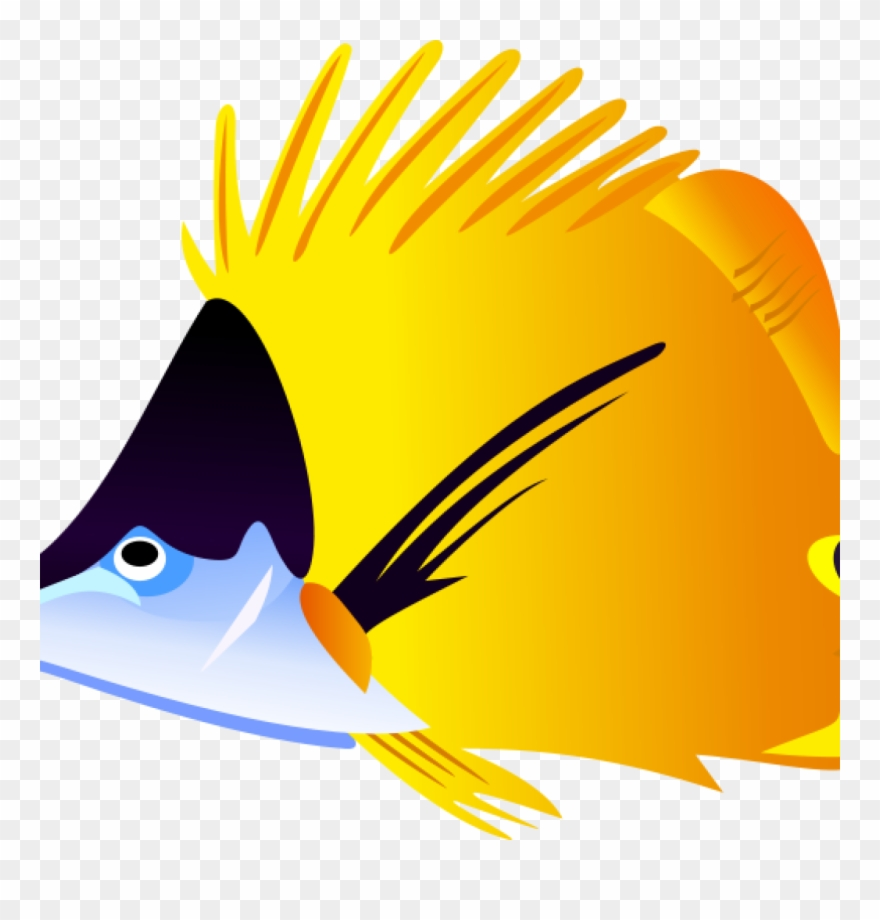 Goldfish clipart sea fish. Free butterfly hatenylo in
