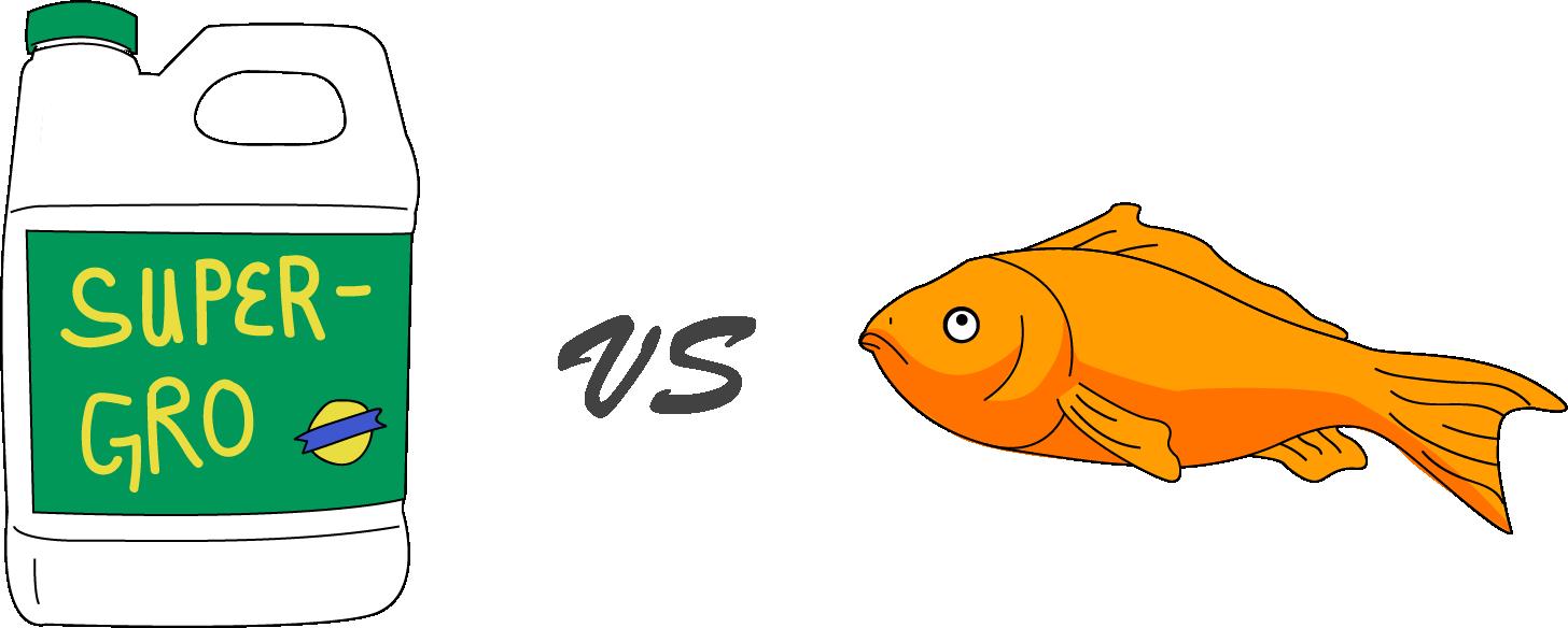 Aquaponics vs hydroponics which. Goldfish clipart single fish