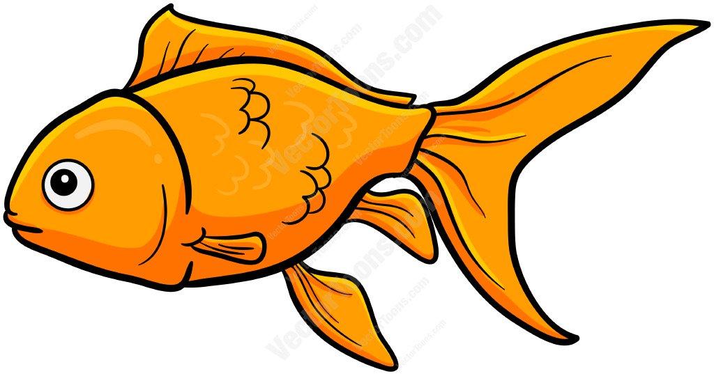 X free clip art. Goldfish clipart two
