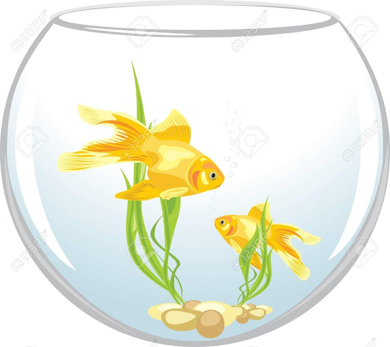 Goldfish clipart two. X free clip art