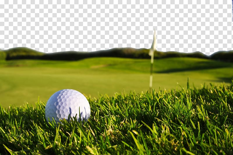 White ball on display. Golf clipart golf field