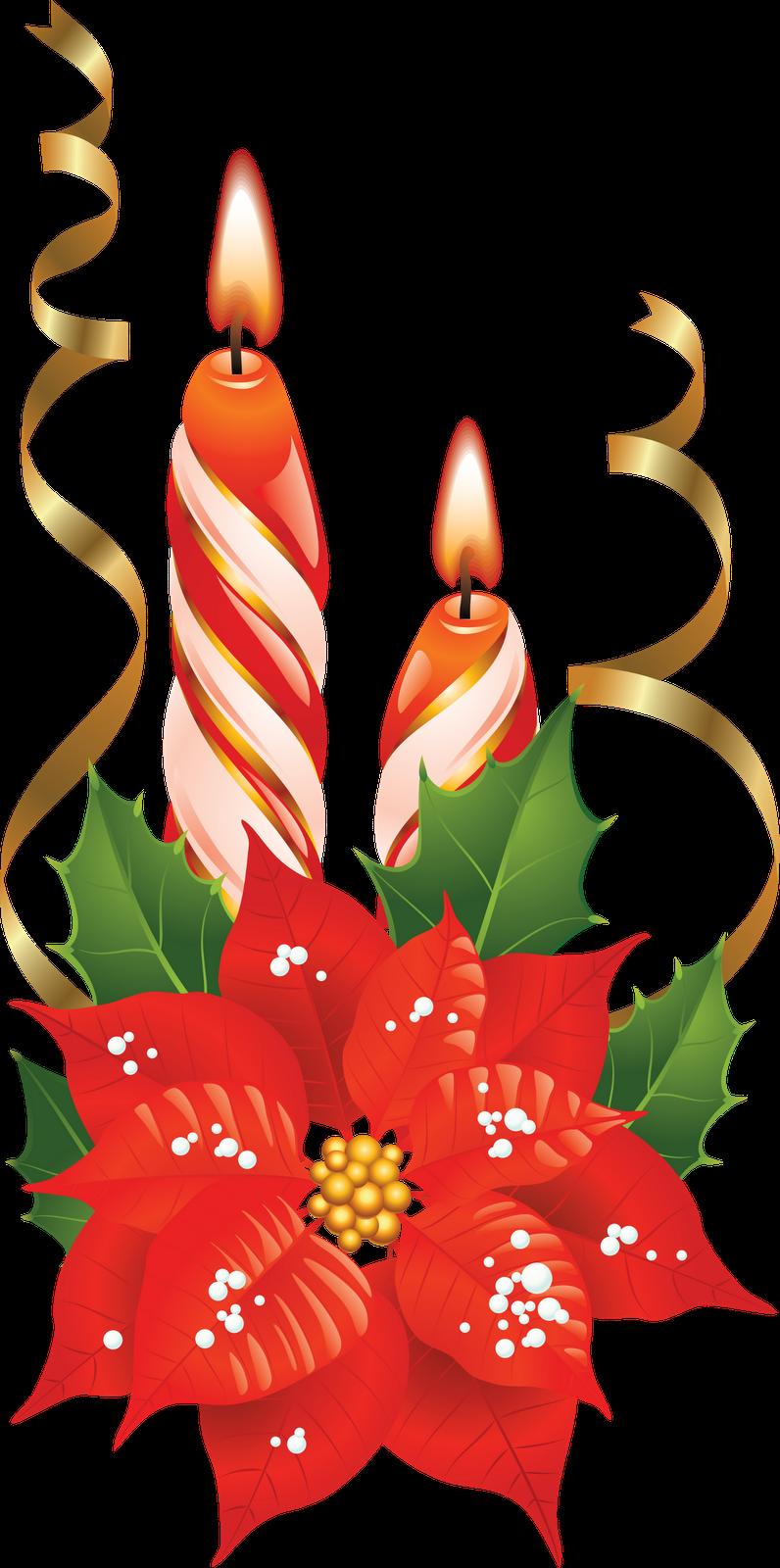Enfeites de natal png. Poinsettia clipart poinsettia corner
