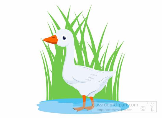 Goose clipart. Animal bird in marsh
