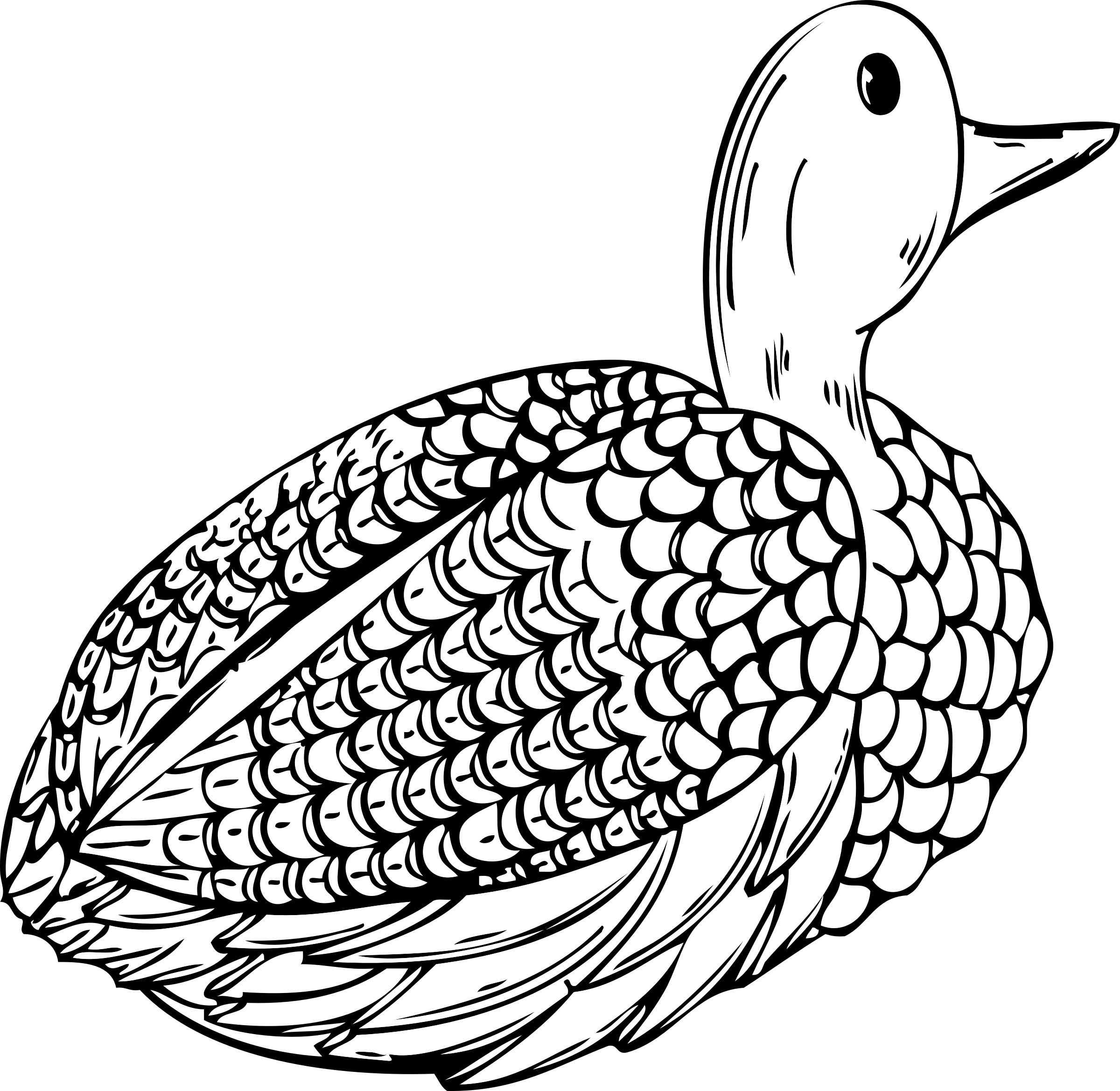 Hunter clipart goose hunting. Animals birds duck decoy