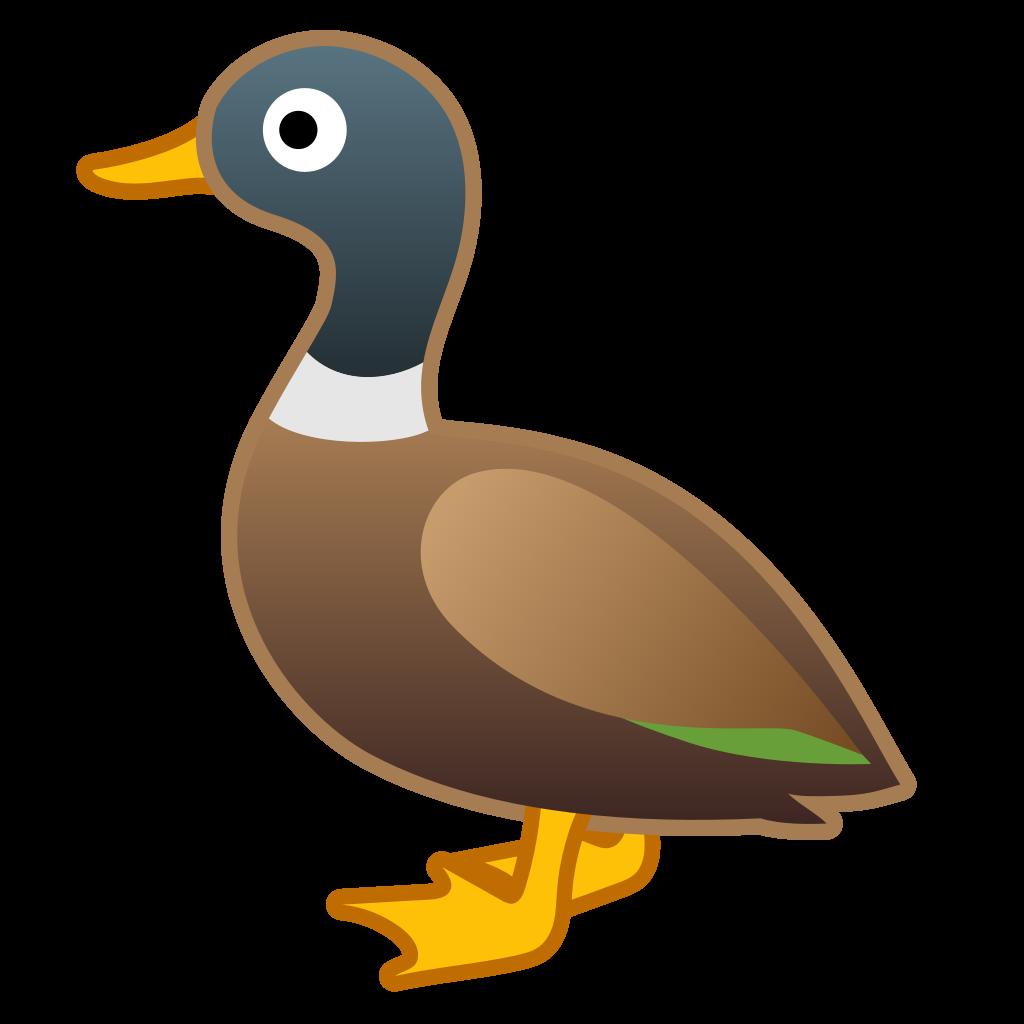 Goose brown duck