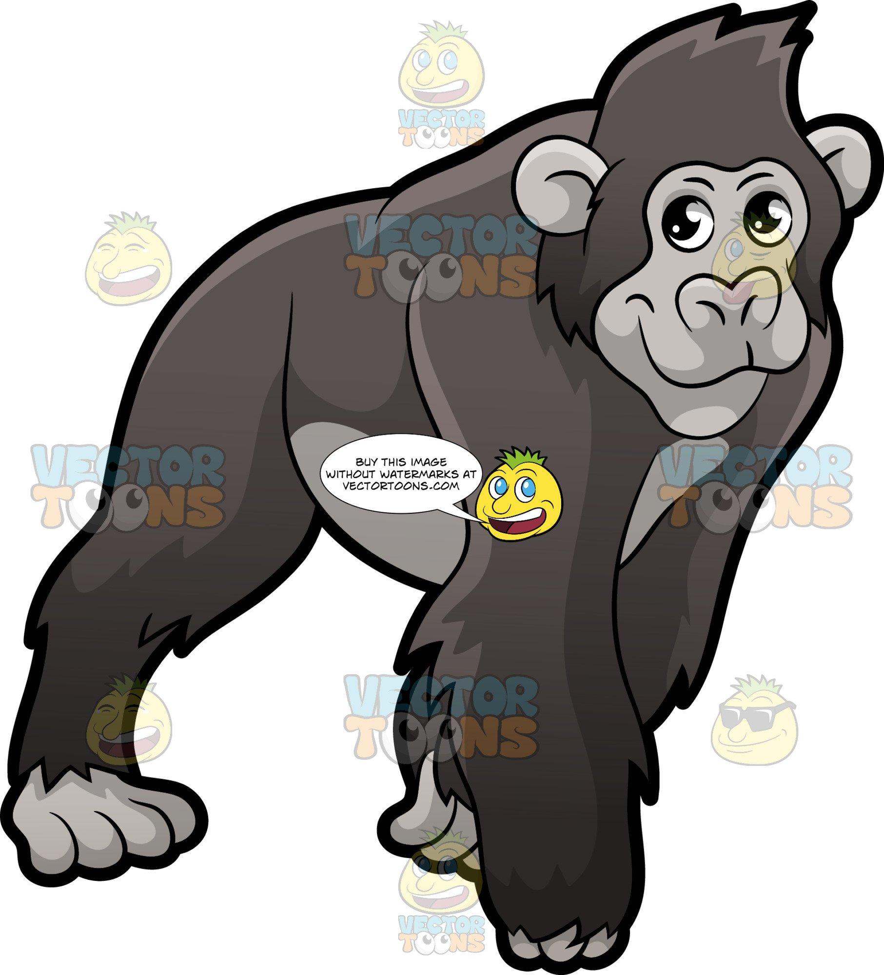 Gorilla clipart zoo gorilla. A on all fours