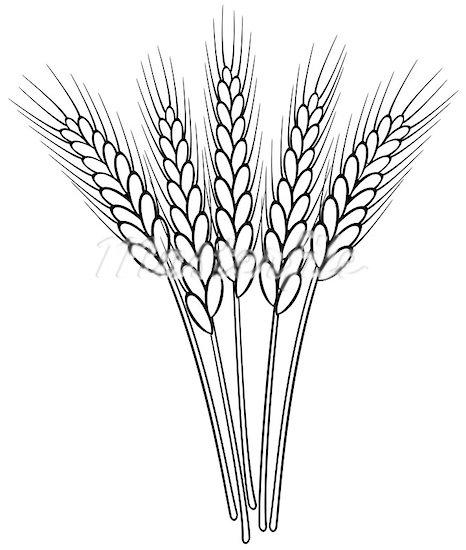 Grain clipart. Wheat panda free images