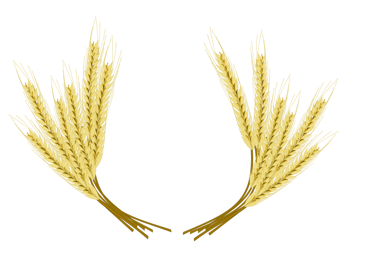 Beer common clip art. Wheat clipart barley
